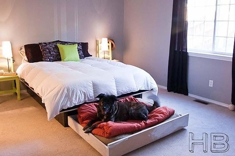 перфектното легло за вашето куче